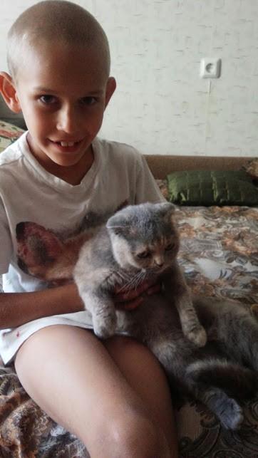 кошка Даша и Артем